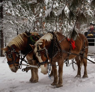 Holiday Horseback Riding Vacation at Black Butte Ranch