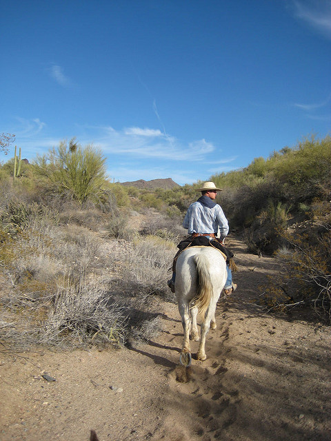 horseback riding vacation kay el bar ranch, wrangler joe ferguson, sonoran desert, wickenburg, arizona