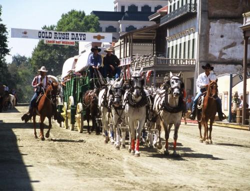 Gold Rush Days Horseback Riding Vacation in Sacramento, California