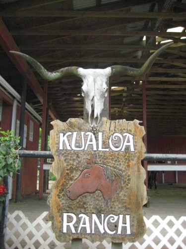 Horseback riding vacation and trail ride at Kualoa Ranch, Oahu, Hawaii
