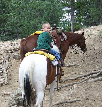 Our son is thrilled about our horseback riding vacation with Cowpoke Corner Corral