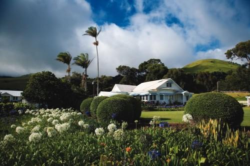 Learn Hawaii's Paniola History on a Horseback Riding Vacation at Anna Ranch