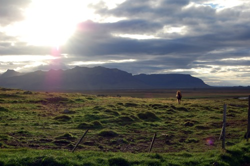 Dress warm for your Iceland horseback riding holiday