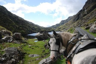 """Our horse, Dawn, says, """"This is not your typical horseback riding vacation."""""""