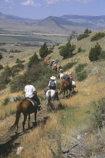 Horseback Riding Vacation with Austin Lehman in Paradise Valley, MT