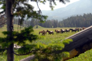 Spanish Peaks Pack String on a Horseback Riding Vacation in Big Sky, Montana
