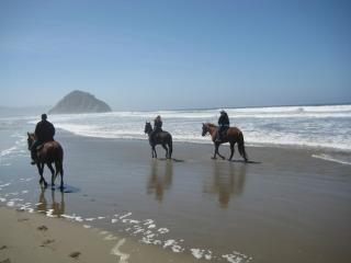 Horseback Riding Vacation Morro Bay And Los Osos California