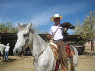 Valente F. Barrena offers horseback riding vacations at Cuadra San Francisco