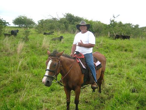 Take a horseback riding vacation with Donald Pascual on Hawaii's Big Island at Pa'ani Ranch
