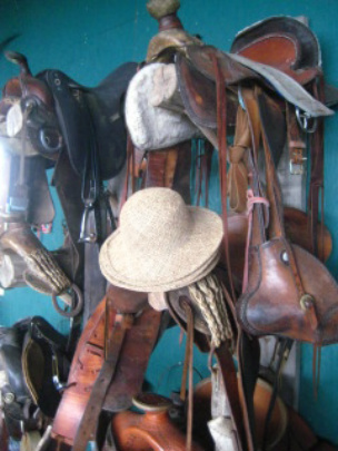 Hawaiian style horseback riding vacation at Pa'ani Ranch on the Big Island