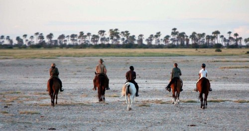 Riders on a horseback riding vacation in Botswana, Africa with Uncharted Africa Safari co.