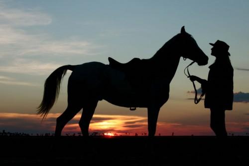 Venture into Botswana's Kalahari and Makgadikgadi ecosystems on a horseback riding vacation