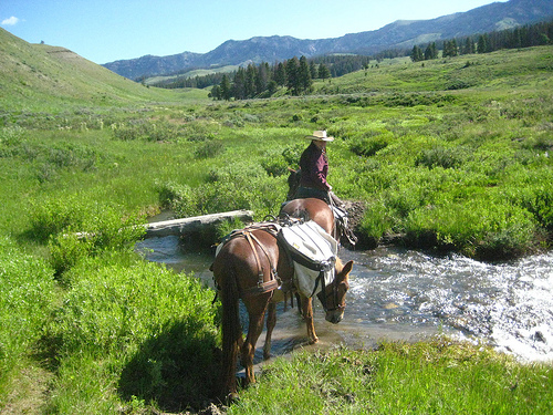 Club at Spanish Peaks Wrangler Kate Levanger on a horseback riding vacation in Yellowstone National Park, near Big Sky Montana
