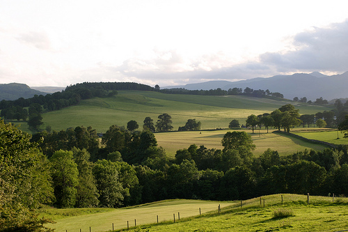 perthshire scotland landscape, scottish highlands pasture land