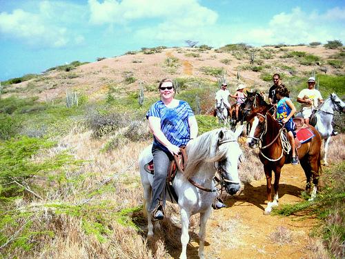 Ride Paso Fino gaited horses on a Curacao Caribbean horseback riding vacation