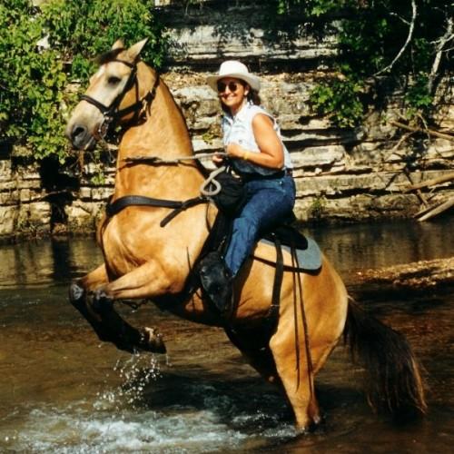 Take a horseback riding vacation in Hurricane Mills, TN at Loretta Lynn Ranch