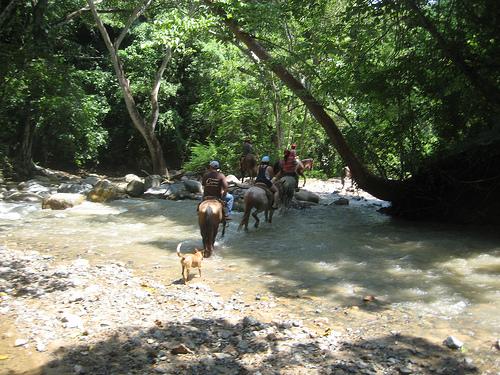 Puerto Vallarta horseback riding vacation at Rancho Capomo, Las Palmas, Mexico
