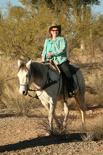 nancy d brown, travel writer, wickenburg, arizona