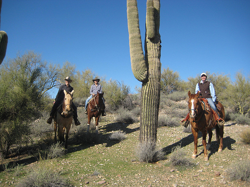 rancho de los caballeros, wickenburg, arizona