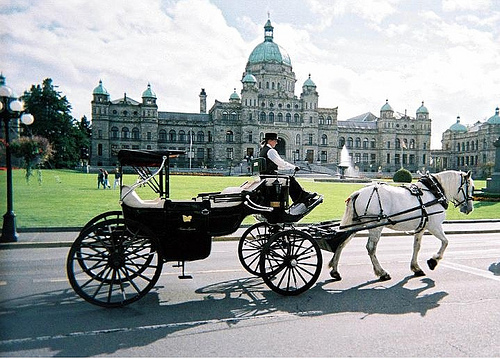 Take a horse and carriage ride at Abbeymoore Manor in Victoria, BC, Canada