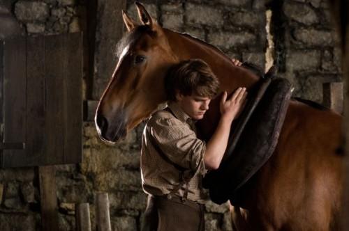 According to one equestrian, Albert's training technique was unrealistic and borderline abusive.