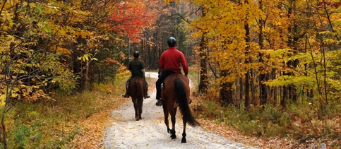 Picture yourself on a horseback riding vacation in Vermont at Mountain Top Inn Resort