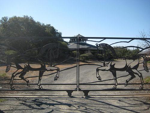 chalk hill estate, chalk hill winery, healdsburg, california, horse, gate