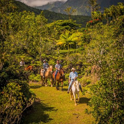 silver falls ranch, kauai, hawaii, horseback riding