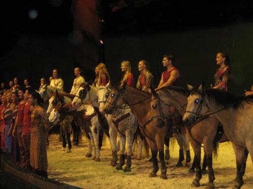 cavalia behind the scenes, cavalia horses