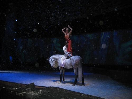 cavalia, horseback show,
