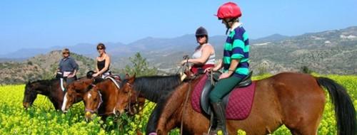 Mediterranean horseback riding holiday in Cyprus