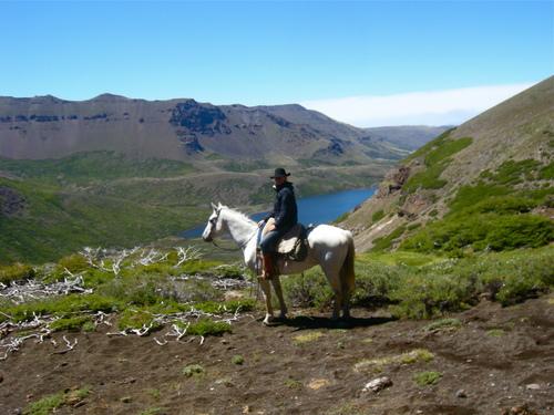 criollo horses, Argentina horseback riding