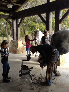 Kids watch horses get new shoes at Lost Pines Resort