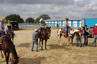 Horseback riding at Picosa Ranch, Texas