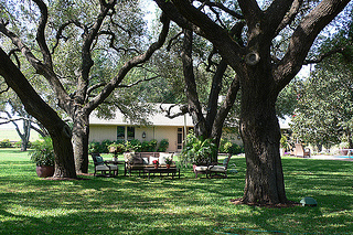 The Oaks at Picosa Ranch, Texas