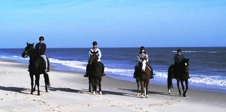 Ocean City Horseback Riding On The Beach