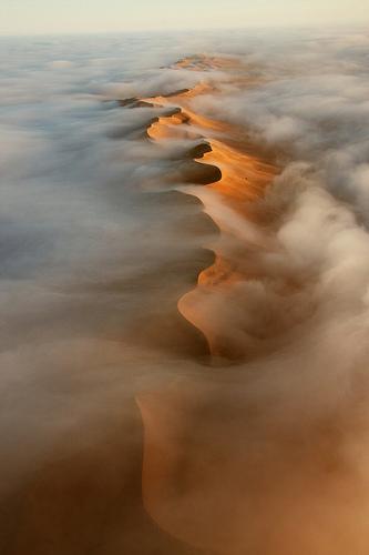 """""""Namib Desert, Africa"""""""