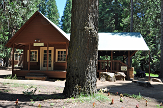Yosemite Pack Station
