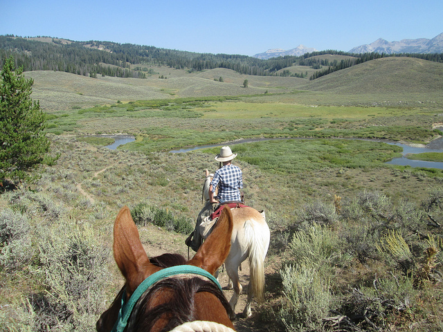 jackson fork ranch horseback riding, shoal creek, gros ventre range, wyoming horseback riding, sleeping indian outfitters