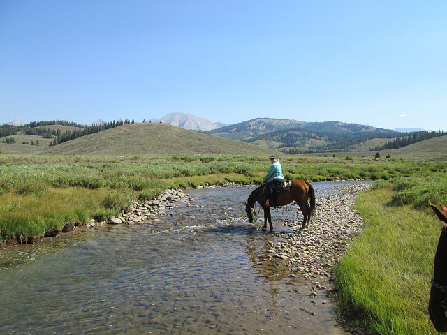 nancy d brown, shoal creek, gros ventre range wyoming, sleeping indian outfitters horseback riding