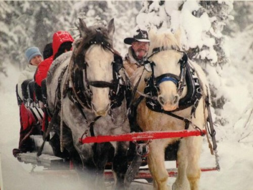 Jasper Park Lodge sleigh ride