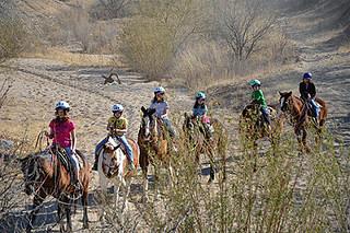 tanque verde, horseback ride