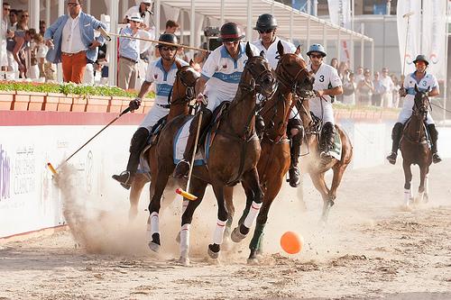 beach polo, horses