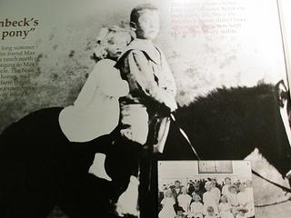 """""""John Steinbeck"""" pony"""