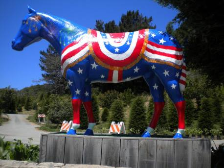 """""""Fourth of July"""" horse"""
