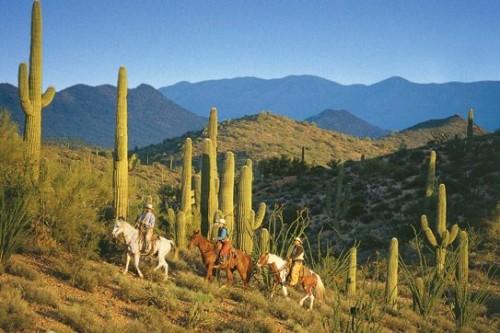 """""""Rancho de los Caballeros"""" arizona"""