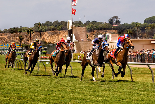 """Del Mar Racetrack"" horses"