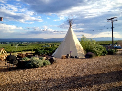"""""""Yakima Valley"""" teepee"""