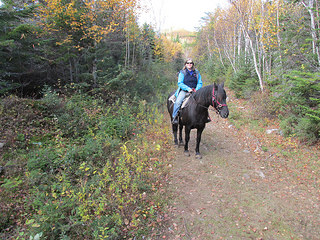 """Nancy D. Brown"" horseback riding, Quebec, Canada"