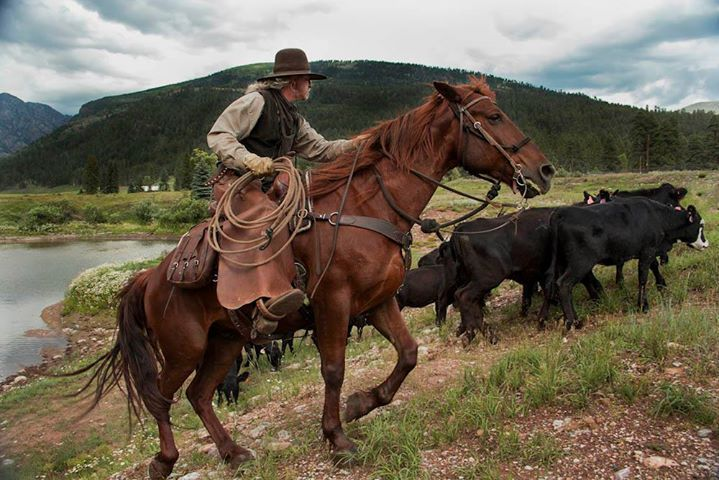 cowboy, horse, Durango, Colorado